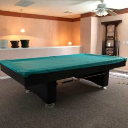 Olehauser Pool Table